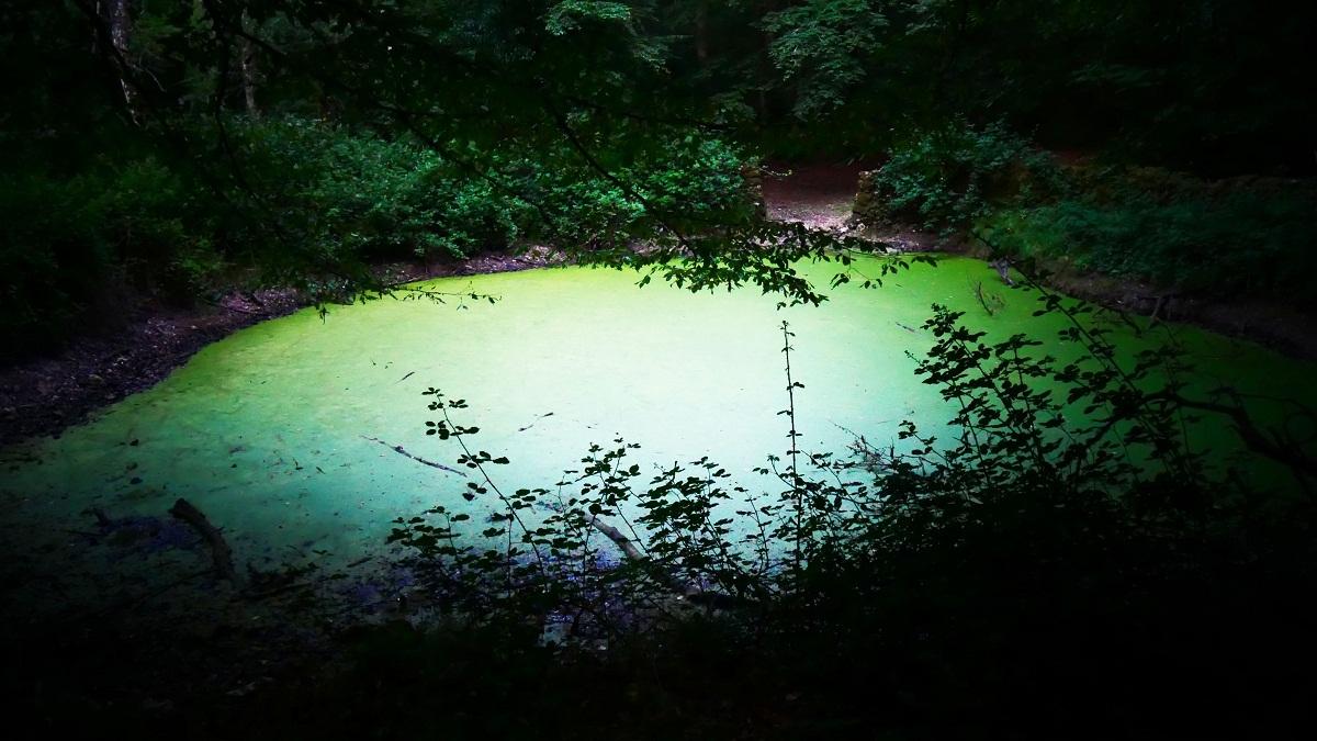 lago-otri