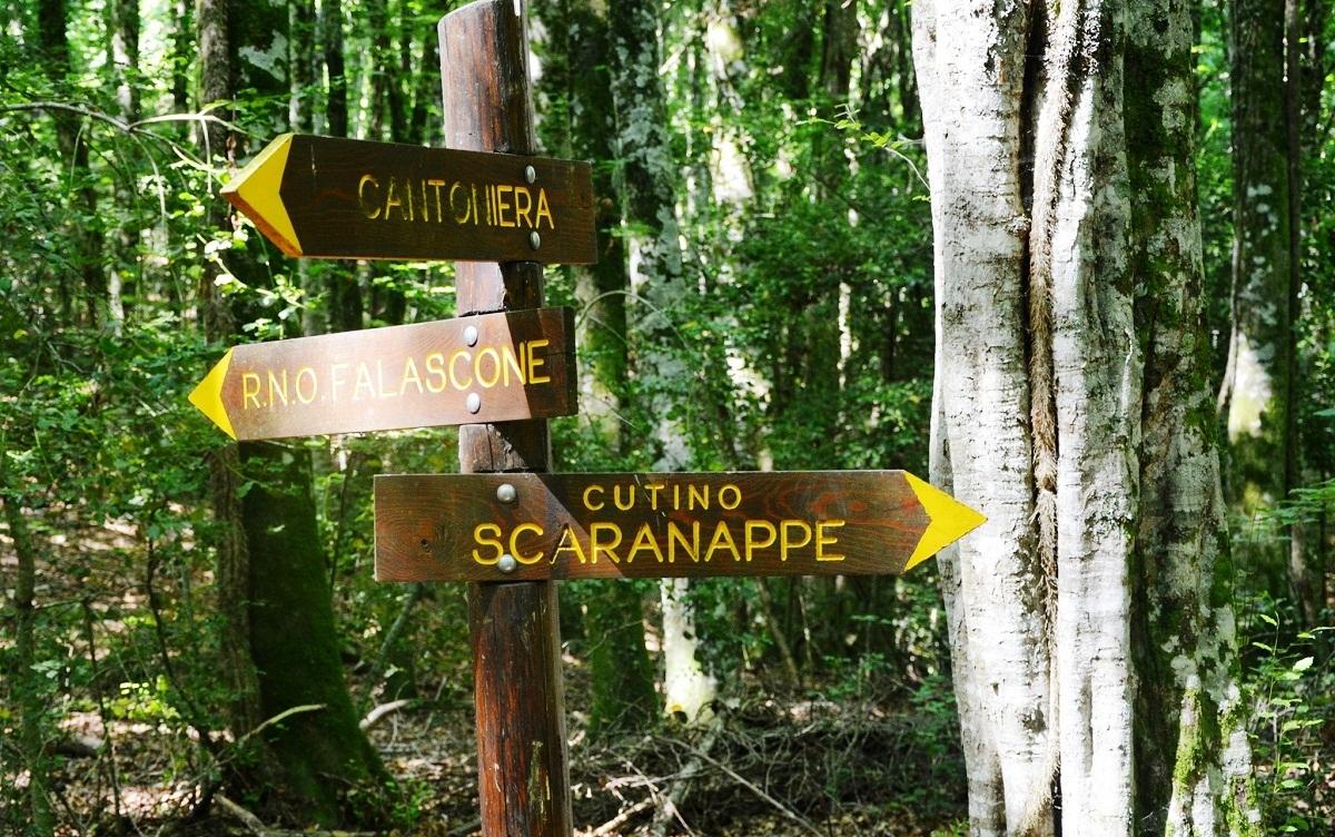 zona-scaranappe-1