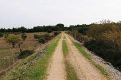 sentiero-8