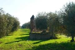 località-Cupola