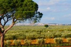 masseria-Del-Sordo-panorama-su-san-Severo