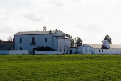 masseria-Torre-dei-Giunchi