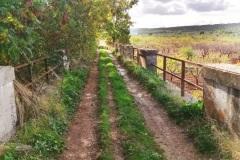sentiero-4