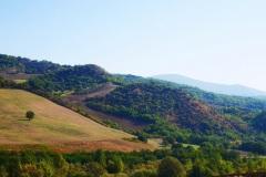 tratturo-Lucera-Castel-di-Sangro-1