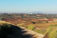 panoramica-col-Vulture