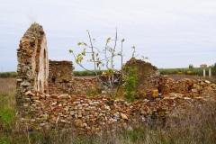 28_località-La-Castagna