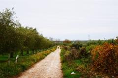 32_località-La-Castagna